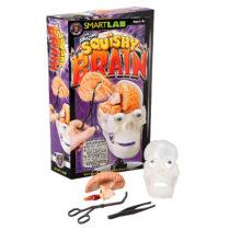 Smartlab Squishy Brain